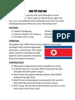 Information Report on North Korea