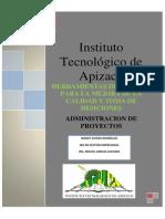 administracion de proyectos blog 1