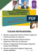 Organisasi Profesi Kesehatan (Gizi) & Perkembangan (Ok Ep Sep 2013)