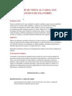 Informe de visita al camal San francisco de Salaverry.docx