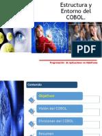 Estructura y Entorno Cobol
