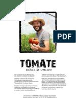 Dossier Tomate Rustico Ecologico