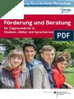 Foerderung und Beratung für Spracherwerb, Abitur und Studium