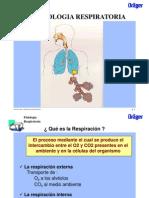 1-Fisiología