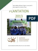 Plantation 2013