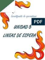 Unidad V (Investigación de Operaciones).pdf