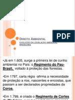 Histórico do Direito ambiental no Brasil.ppt