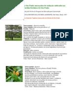 Plantas-em-Extincao-Site21.pdf