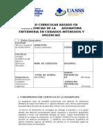 cuidados_intensivos_2012.doc