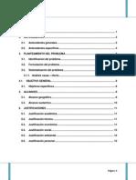 REHABILITACION DE POZOS CERRADOS MEDIANTE LA APLICACIÓN DE LA TECNOLOGIA DE PERFORACION RADIAL ORG.docx