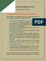 Agarose Gel Electrophoresis of DNA.pdf