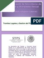 Secretaria de Trabajo y Prevision Social