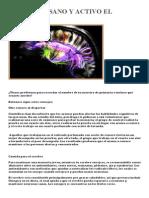 Mantener Sano y Activo El Cerebro