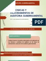 Técnicas y Procedimientos de Auditoria Gubernamental