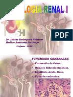 Clase 5. Patologia Renal I