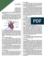Fisiologia Do Sistema Circulatório