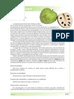 chirimoya.pdf