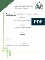 Control de Muerdago en Bosques de Coniferas y Hojosas de México