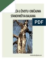 drvece