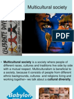 1.Multicultural Society