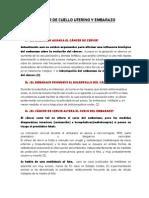CANCER DE CUELLO UTERINO Y EMBARAZO.docx
