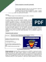 Valorificarea Energetica a Resurselor Geotermale