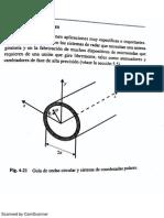 Líneas - Expo.pdf