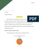english report dv