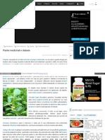 Piante Medicinali e Diabete