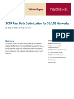 Paper Lte Sctp Fast Path