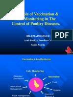 prostatite e hiv virus