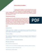Tumores Derivados Del Epitelio Celómico