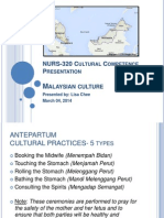 nurs-320 cultural competence presentation