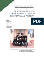 Racul=Astacus-astacus=Sc.Ghermanesti=ver2.0.pdf
