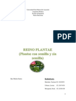 Botanica (REINO PLANTAE)