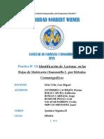 lactonas, esteroides y flavonoides en Matricaria Chamomilla L. y en Minthostachys Muñis Por Métodos Cromatográficos