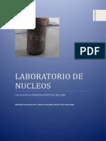 Laboratorio de Nucleos n2