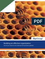 Hay group building effective organization