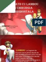 Operatii Cu Lambou