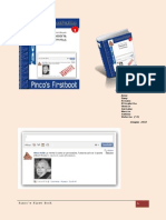 Pinco's1stBook.pdf