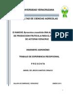 santosciriaco.pdf