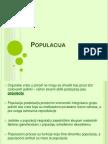 07-populacija