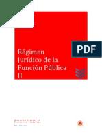 04 Régimen FP II.pdf