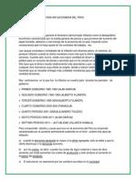 TASA INFACIONARIA DEL PERU.docx