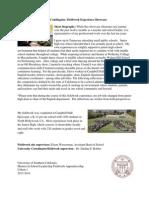 fieldworkexperienceshowcasetemplate 1