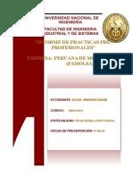 Informe Trabajo_pamolsa (1)