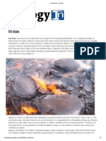 Geology IN_ Oil shale.pdf