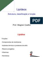 3_Lipideos