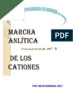 Analisis Químico_Práctica N° 1