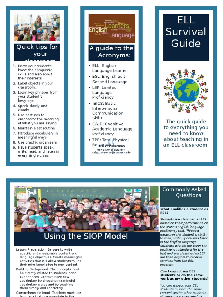 brochure writing for students